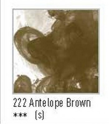 N.222 FW TINTA ACRÍLICA ANTELOPE BROWN