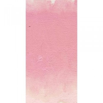 WILLIAMSBURG 37ml Dianthus Pink S4