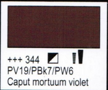 N.344 ACRI. AMSTERDAM CAPUT M.VIOL.