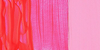 N.384 ACRI. AMSTERDAM ROSA REFLEX
