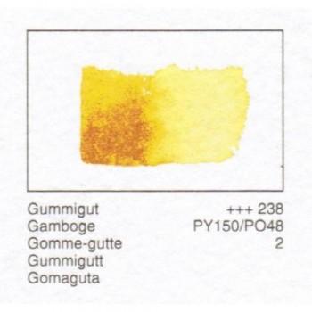 ACUA. REMBRANDT - GOMAGUTA