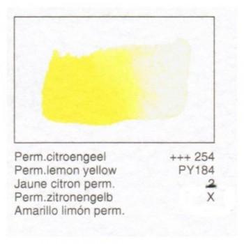 ACUA. REMBRANDT - AMAR.LIMON PERM