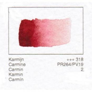 ACUA. REMBRANDT - CARMIN