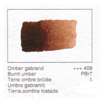 ACUA. REMBRANDT - T.SOMBRA TOST.