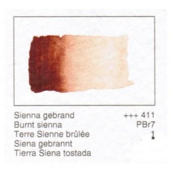 ACUA. REMBRANDT - T.SIENA TOSTADA