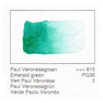 ACUA. REMBRANDT - VERDE P.VERONES