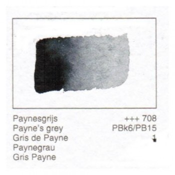 ACUA. REMBRANDT - GRIS PAYNE