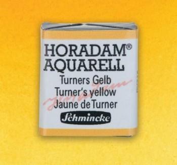 N.219 Amarillo de Turner - ACUA. S. HORADAM S1
