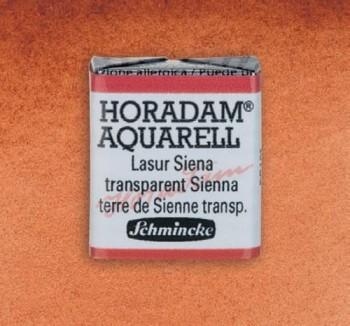 S. HORADAM S1 N.653 Siena Transparente